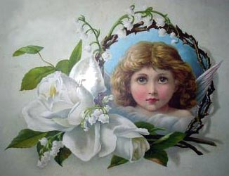 angel face with white roses