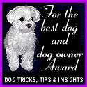 Dog Tricks, Tips and Insights Best Dog and Dog Owner Award