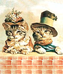 cats in Victorian hats